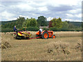 SK6248 : Harvesting with reaper and binder - 11 by Alan Murray-Rust