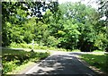 SU2912 : Road junction, Shave Wood by Alex McGregor