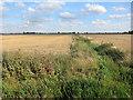 TL3873 : Ditch offf Long Holme Drove by Hugh Venables