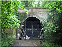 TQ3472 : Crescent Wood Tunnel Entrance, Sydenham Hill Wood by Roger W Haworth
