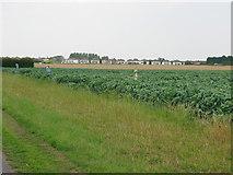 TR3256 : View across farmland near John's Green by Nick Smith
