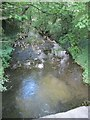 SU3987 : Letcombe Brook from Ickleton Road by Bill Nicholls