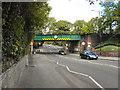 SJ8984 : Railway Bridge, Bramhall Lane South by David Dixon