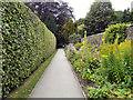 SJ8886 : Bramall Hall Garden by David Dixon