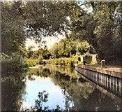SU7251 : Basingstoke Canal near Odiham castle by Paul Gillett