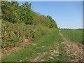 TL6046 : Unnamed plantation by Hugh Venables