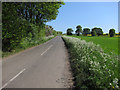 TL5948 : Road past Mark's Grave by Hugh Venables