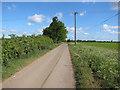 TL5472 : High Fen Road by Hugh Venables