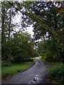 TM2552 : The Entrance to Boulge Park by Adrian Cable