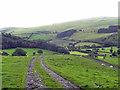 SJ1334 : Ceiriog Valley near Pentre by Row17