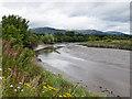 NS8493 : River Devon near Cambus by William Starkey