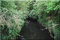 TQ2172 : Beverley Brook - upstream by N Chadwick