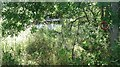 NU2219 : Pond, Stamford by Richard Webb