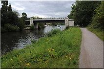 TQ0866 : Eastern bridge over Desborough Cut by Philip Halling