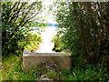 SJ8462 : Stream enters the lake by Jonathan Kington