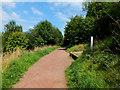 SJ8562 : Up the hill by Jonathan Kington