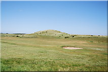 NU2422 : Dunstanburgh Castle Golf Course by N Chadwick