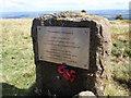 SO2905 : Cofeb Blenheim Memorial by Alan Richards