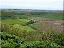 SE8493 : Hole of Horcum, Yorkshire by pam fray