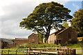 SJ9565 : Wincle Grange by Trevor Harris