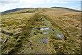 SN1132 : Soggy path by Mynydd-bach by Bill Boaden