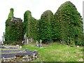 C2927 : Rathmullan Priory by Kenneth  Allen