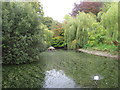 ST6601 : Duck pond, Cerne Abbas by Alex McGregor
