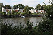 TQ1673 : Houses on Eel Pie Island by Philip Halling