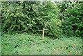 TQ1913 : Downs Link signpost by N Chadwick