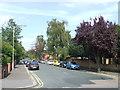 TL4601 : Hartland Road, Epping by Malc McDonald