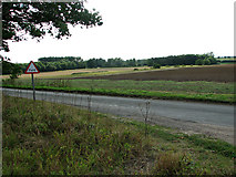 TF8707 : Fields west of Brown's Lane, Holme Hale by Evelyn Simak