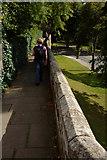 SJ4065 : City Wall, Castle Drive by Mark Anderson