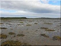 C4448 : Trawbreaga Bay (3) by Kenneth  Allen