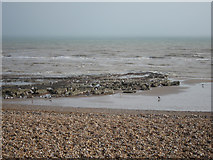 TQ7407 : Low tide at Bexhill Beach by Oast House Archive