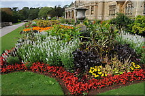 ST5071 : Gardens at Tyntesfield by Philip Halling