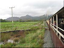 SH6041 : Ynysfor crossing, Welsh Highland Railway by Gareth James