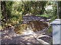 ST3195 : Puddle adjacent to access road to Ysgubornewydd Farm near Croesyceiliog by Jaggery