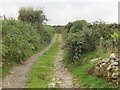 J1624 : Farm road leading from Mayo Road to upland pastures by Eric Jones