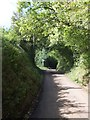 SS9415 : A tunnel-like lane to Keepers Cross by David Smith