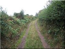SJ7600 : Footpath Near Badger by Geoff Pick