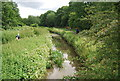 TQ5586 : River Ingrebourne by N Chadwick