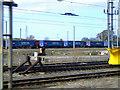 NY3858 : Tesco train at Kingmoor by Thomas Nugent