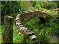 SE0137 : Footbridge at Lumb Foot by John Darch