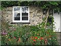 SX8380 : Front garden, Hennock  by Robin Stott