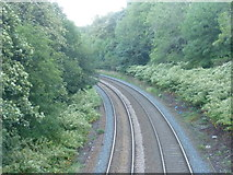 NT2671 : South Suburban Railway line from Blackford Avenue by kim traynor