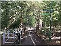 TQ4271 : Green Chain Walk junction on Elmstead Lane by David Anstiss