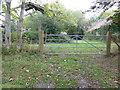 TQ4020 : Derelict Vixengrove Farm by Dave Spicer