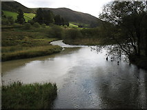 SN8482 : The meeting of the River Wye (Afon Gwy) and the Afon Tarrenig by David Purchase