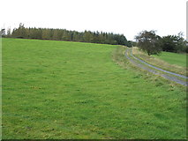SN9078 : The track above Clochfaen by David Purchase