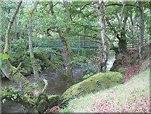 SN9571 : Footbridge over the River Wye (Afon Gwy) by David Purchase